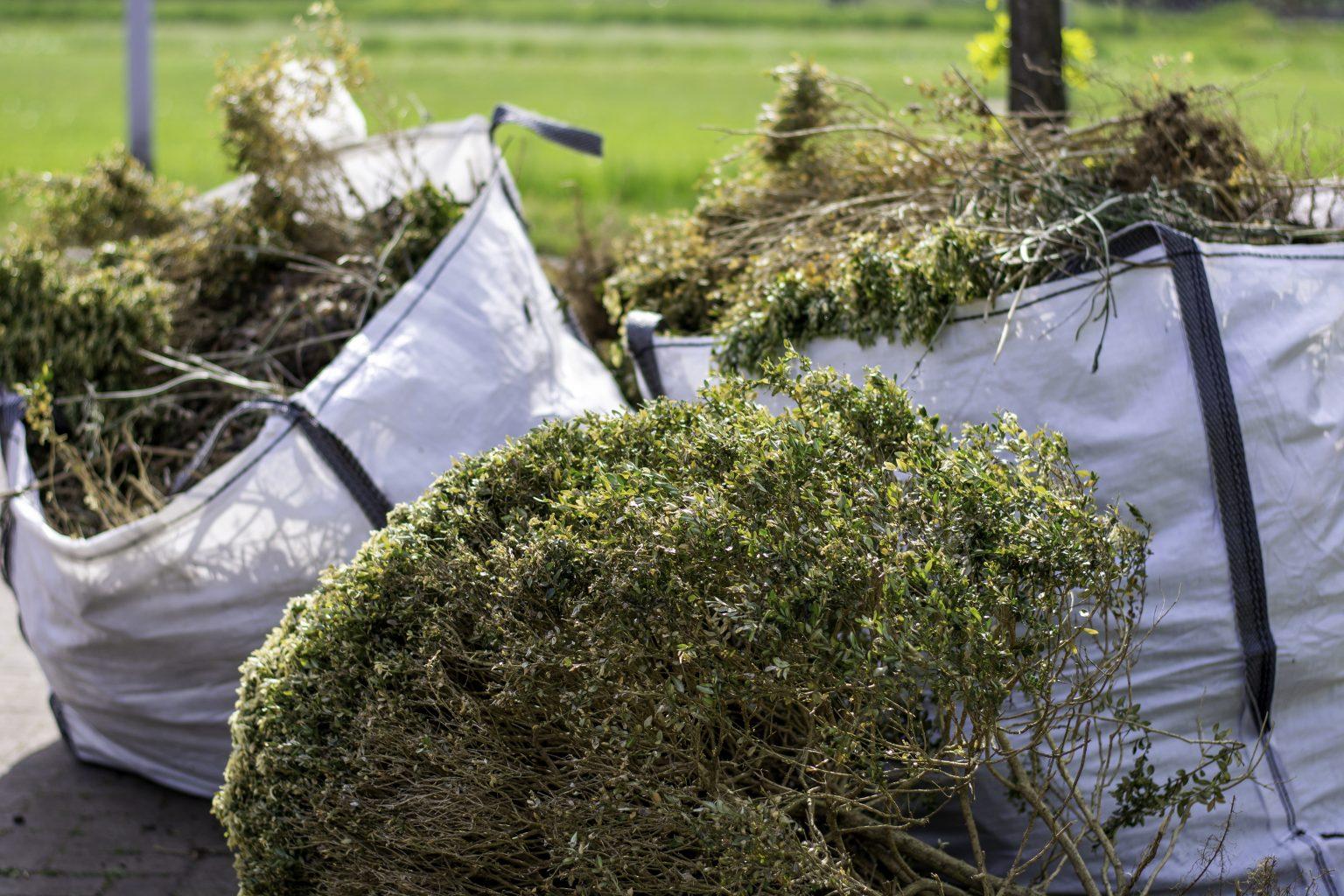 Brûlage des déchets verts : augmentation de l'amende